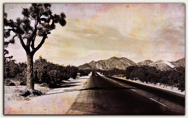 Highway Across the Desert