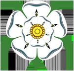 York Rose